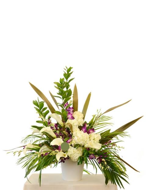 Picture of Tropical Memories Vase Arrangement