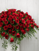 Picture of Serene Roses