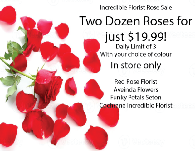Picture of $19.99 Rose Special